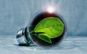 Read more about the article How to Effectively Reduce Energy Consumption at the Office